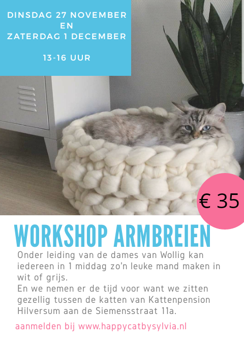 workshop armbreien